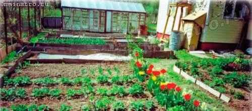 Со временем газон перед  домом и грядки с зеленью оказались выше уровня отмостки