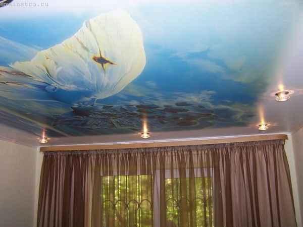 Натяжные потолки с печатью фотографии бабочки