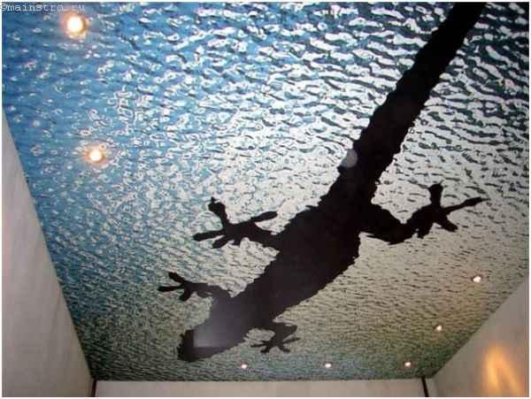 Натяжные потолки с оригинальной фотопечатью