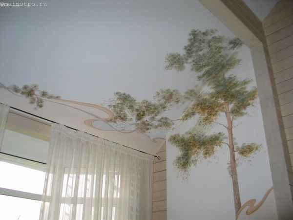 Натяжные потолки с фотопечатью переходящие на стену