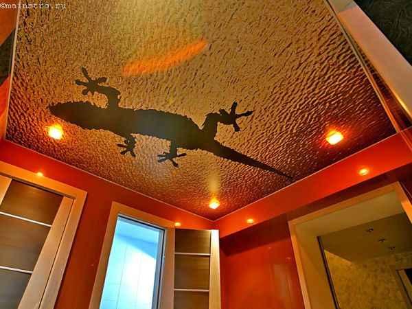 Натяжные потолки с фотопечатью ящерицы