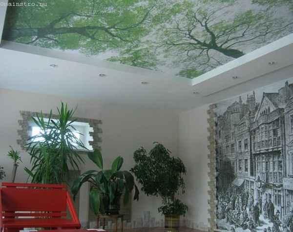 Тканевые натяжные потолки с фотопечатью природы