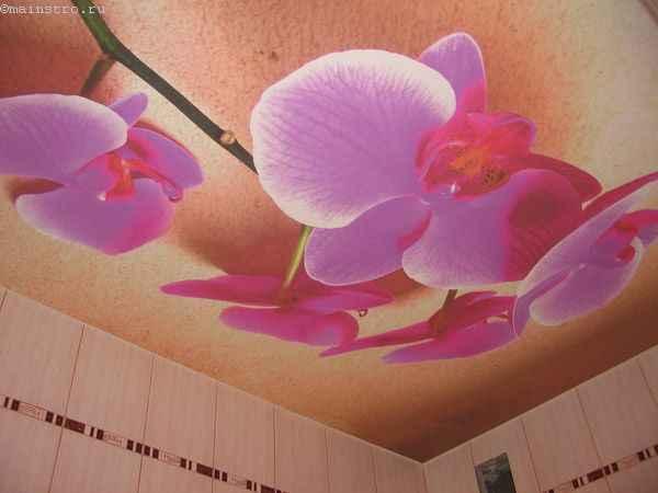 Тканевые натяжные потолки с фотопечатью орхидеи