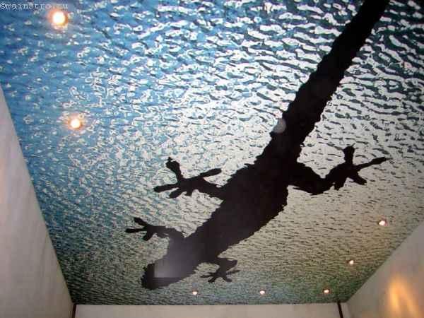 Одноуровневые натяжные потолки с фотопечатью