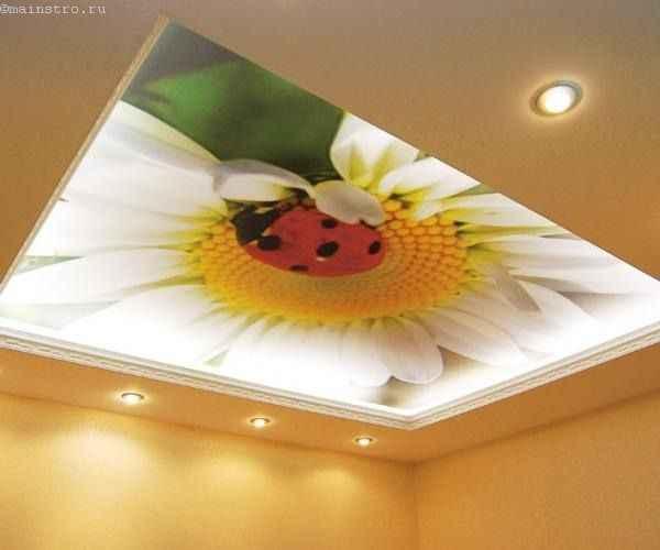 Матовые натяжные потолки с фотопечатью цветка